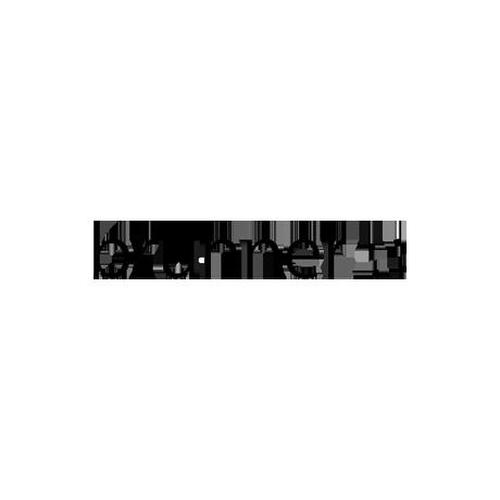 logo-brunner-homepage-final